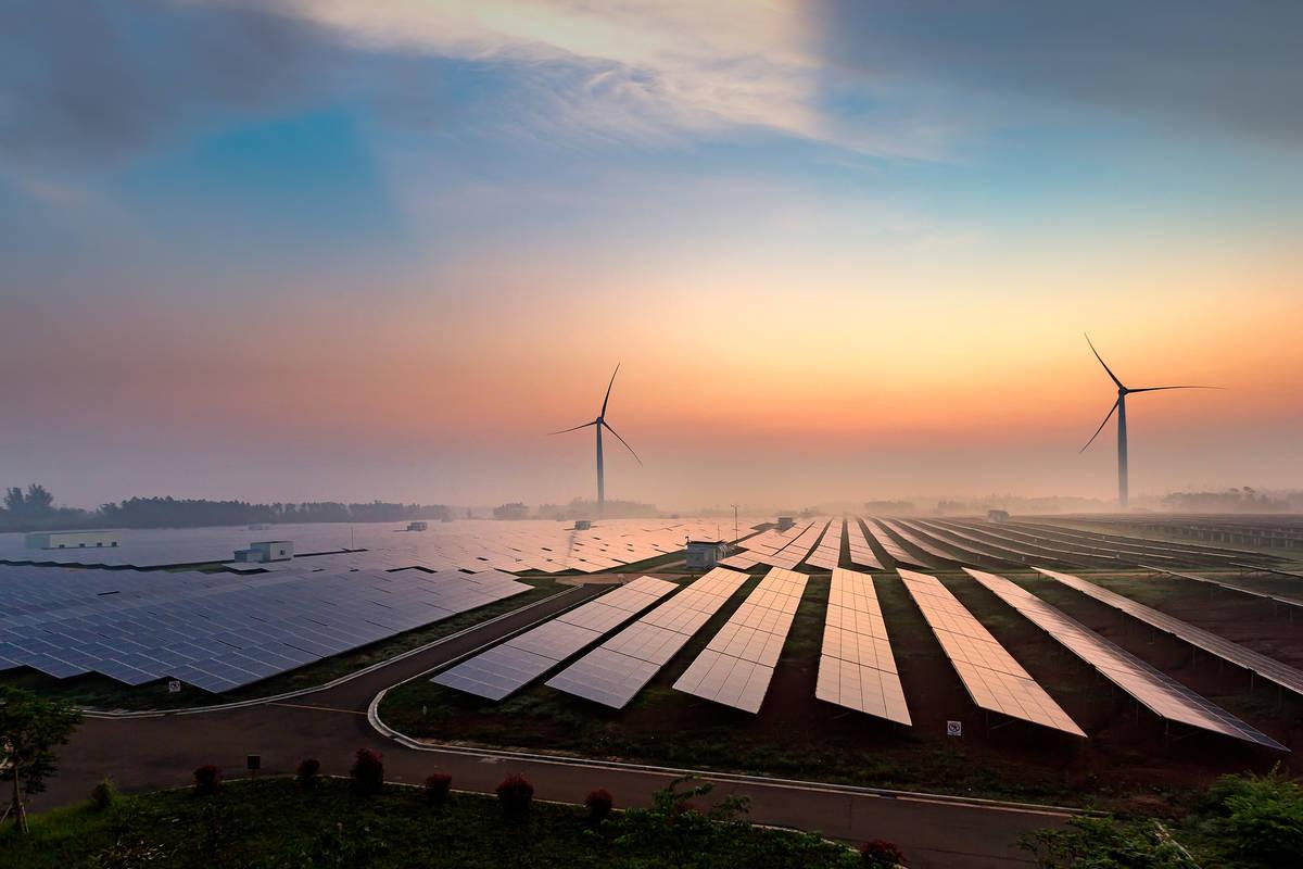 """""""PlanetFirst"""": Nachhaltigkeit bei Samsung"""